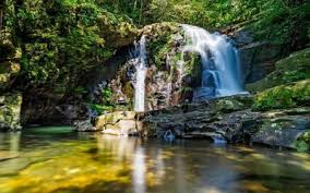 Tour vườn quốc gia Bạch Mã đi từ Huế